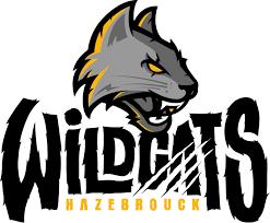 Wildcats Hazebrouck, Rue du Milieu, 59190 Hazebrouck